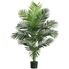 "60"" Paradise Palm Tree in Green"