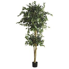 "72"" Silk Double Ball Ficus Tree in Green"