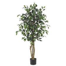 Silk Ficus Tree in Green