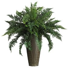 Silk Ruffle Fern Floor Plant in Decorative Vase