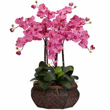 Large Phalaenopsis Silk Flower Arrangement in Dark Pink