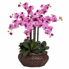 <strong>Nearly Natural</strong> Large Phalaenopsis Silk Flower Arrangement in Mauve