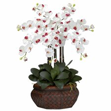 <strong>Nearly Natural</strong> Large Phalaenopsis Silk Flower Arrangement in White