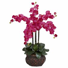 <strong>Nearly Natural</strong> Phalaenopsis with Decorative Vase Silk Flower Arrangement in Beauty