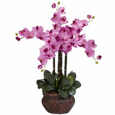 Phalaenopsis with Decorative Vase Silk Flower Arrangement in Mauve