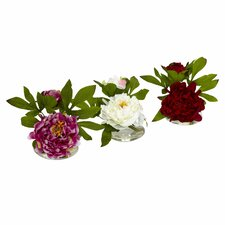3 Piece Peony w/Glass Vase Set