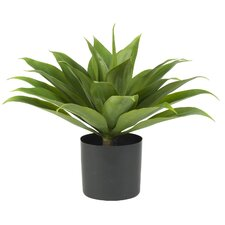 <strong>Nearly Natural</strong> Agave Silk Desk Top Plant in Pot
