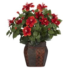 Hibiscus Desk Top Plant in Decorative Vase
