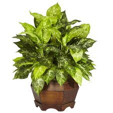 <strong>Nearly Natural</strong> Variegated Dieffenbachia Desk Top Plant in Planter