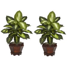 Dieffenbachia in Gold with Wood Vase Silk Plant (Set of 2)