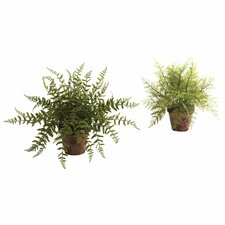 Nearly Natural Fern Desk Top Plant in Planter (Set of 2)