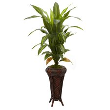 Nearly Natural Dracaena Floor Plant in Decorative Vase