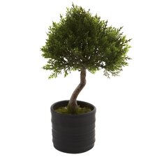<strong>Nearly Natural</strong> Nearly Natural Cedar Bonsai Tree in Planter (Set of 2)
