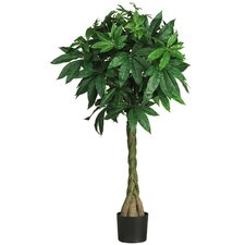 Nearly Natural Braided Money Tree in Pot