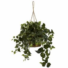 <strong>Nearly Natural</strong> Nearly Natural Philo Hanging Plant in Basket