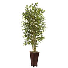 Bamboo Tree with Decorative Planter