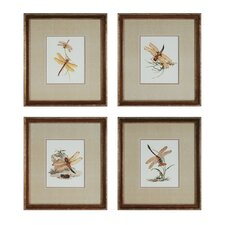 Dragonflies 4 Piece Framed Graphic Art Set