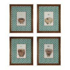 Nest and Eggs 4 Piece Framed Graphic Art Set