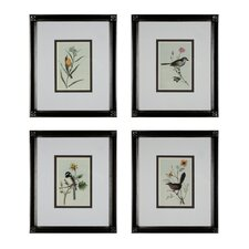 Birds On A Branch 4 Piece Framed Graphic Art Set