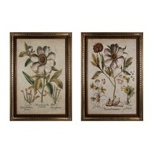 Custom Ivory Peonies 2 Piece Framed Graphic Art Set