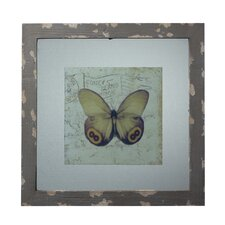 <strong>Sterling Industries</strong> Wood Picture Frame with Butterfly Print