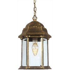 Boulevard Medium Chain 1 Light Pendant