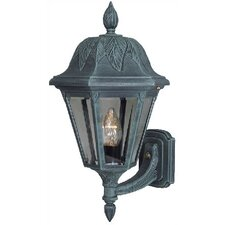 <strong>Special Lite Products</strong> Floral Outdoor Wall Lantern
