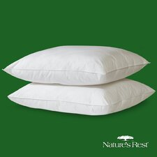 Eco Premium Fiber Pillow (set of 2)