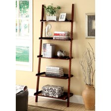 Quint Ladder Shelving Unit