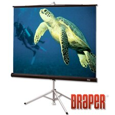 Diplomat/R AV Format Projection Screen with Black Carpeted Case