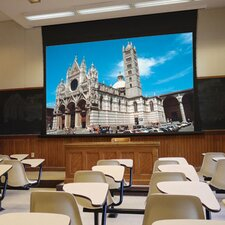 Access XL/Series V Projection Screen with Low Voltage Controller