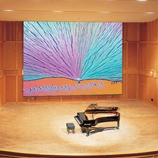 Paragon/Series E Matte White Electric Projection Screen