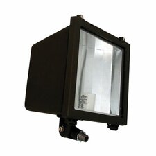 One Light Metal Halide Flood Light in Architectural Bronze