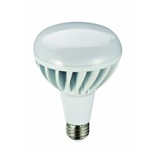 12W (3000K) LED Light Bulb