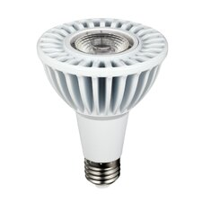 13W (2700K) LED Light Bulb