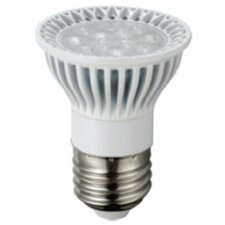 5W (2700K) LED Light Bulb