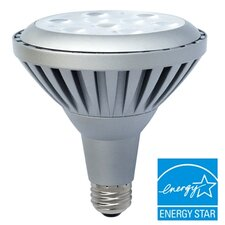 LED PAR 38 Dimmable Bulb