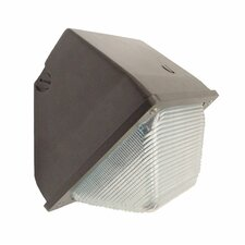 100W HPS Outdoor Small Wall Light in Bronze