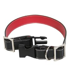 Small - Medium  Dog Collar