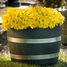 Round Barrel Planter