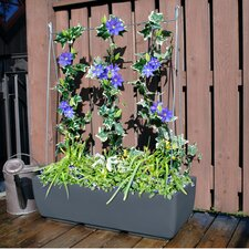 Vertical Grow Frame