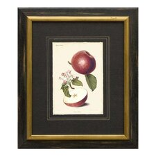 <strong>Phoenix Galleries</strong> Apples Framed Print