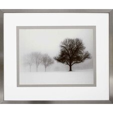 <strong>Phoenix Galleries</strong> Winter Trees I Framed Photograph