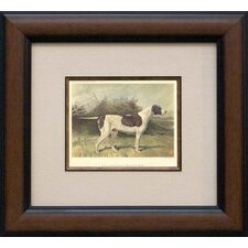 Pointer Framed Print