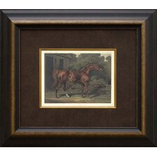 <strong>Phoenix Galleries</strong> Eclipse Horse Framed Print