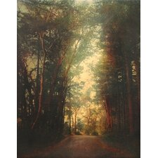 <strong>Phoenix Galleries</strong> Road of Mysteries 2 Canvas Transfer