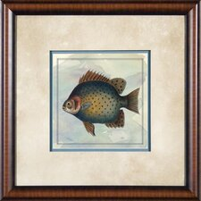 "Tropical Fish 1 Framed Print - 21""x 21"""