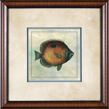 "Tropical Fish 3 Framed Print - 21""x 21"""