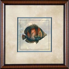 "Tropical Fish 5 Framed Print - 21""x 21"""