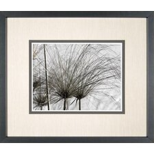 <strong>Phoenix Galleries</strong> Papyrus 3 Framed Print